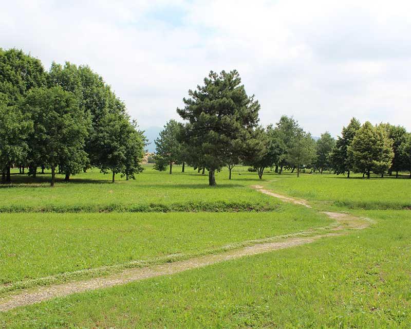 Giardino Turchia