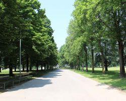 Parco Liberazione e Pace - ex Ippodromo